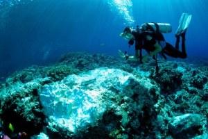 sunscreen-kills-coral
