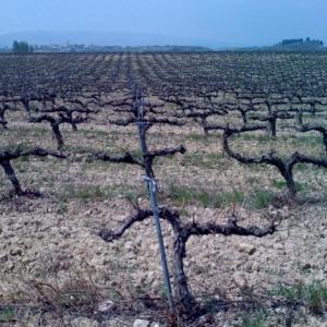 090806-Spain-Pix.050