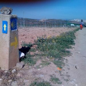 090806-Spain-Pix.062